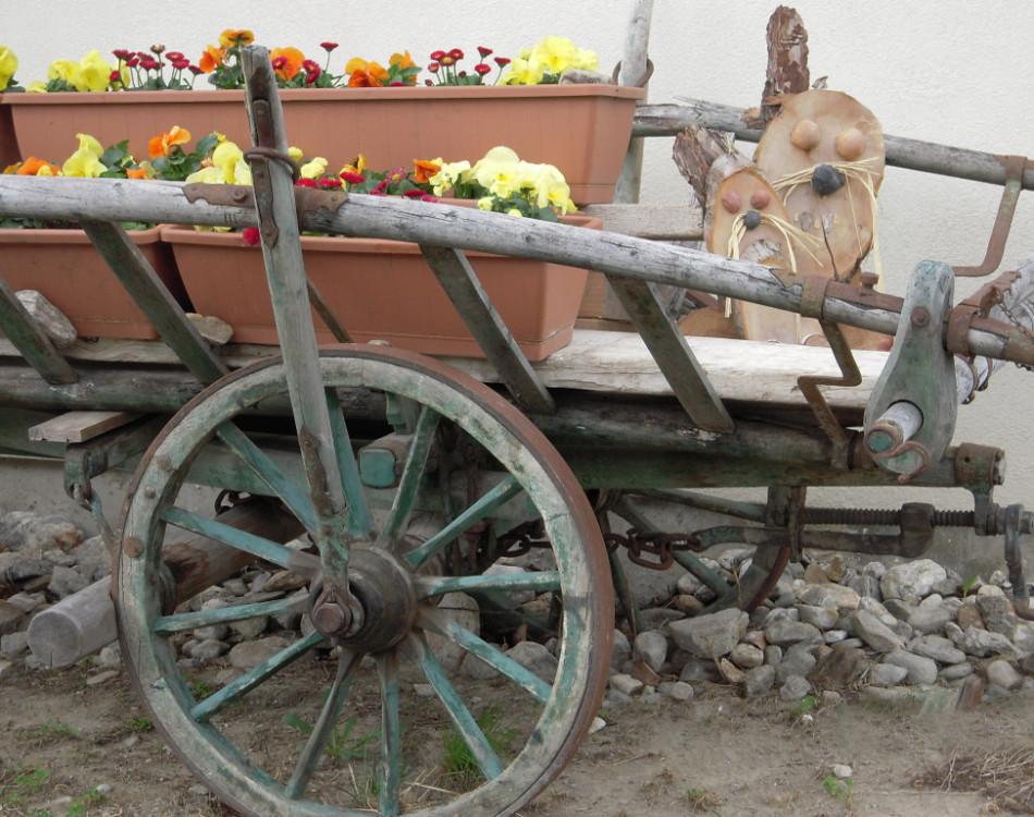 Carrozza in giardino